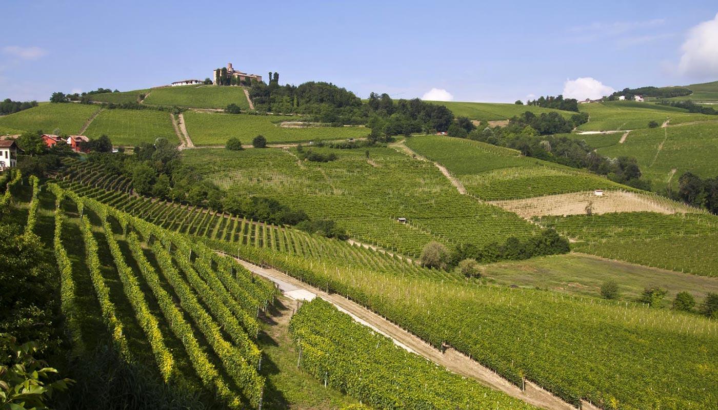 Il Monferrato